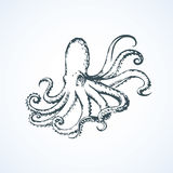 Octopus. Vector drawing. Devilfish isolated on white backdrop. Freehand outline black ink hand drawn picture sketchy in art retro scribble style pen on paper Stock Photo