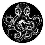 Octopus vintage woodcut engraved etched style Royalty Free Stock Photos
