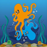 Octopuses in the sea. Two blue and orange octopus play in the depths of the ocean Royalty Free Stock Images