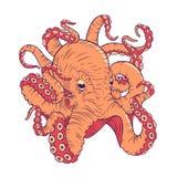 Octopusillustratie Royalty-vrije Stock Afbeeldingen