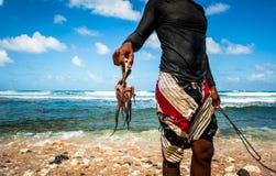 Octopusjager van Barabdos, het wild Stock Afbeelding