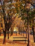 Octubre en París imagen de archivo libre de regalías