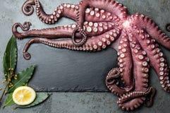 ocular Karmowy tło z owoce morza surową świeżą ośmiornicą, bobkiem i cytryną, odbitkowa przestrzeń, szarości łupkowy tło ocular fotografia royalty free