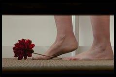 Ocultación bajo la cama Imagen de archivo