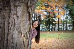 Ocultado en un árbol Fotos de archivo