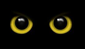 Oczy dzikie zwierzę w ciemność wektorze Obraz Royalty Free