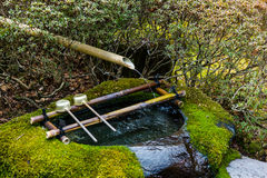 Oczyszczanie wody przy wejściem Japońska świątynia Japonia kopyść w świątyni Obrazy Royalty Free