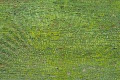 Oczyszczona krakingowa drewniana tekstura Fotografia Royalty Free