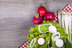 Odświeżająca witaminy sałatka Świeża sałata, rzodkwie i wiosny oni, Fotografia Stock