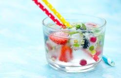 Odświeżająca woda z zamarzniętym w kostek lodu jagod owoc i flo Obrazy Royalty Free
