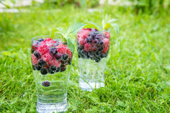 Odświeżający lato napój z iskrzastą wodą i świeżymi jagodami Fotografia Royalty Free