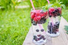 Odświeżający lato napój z iskrzastą wodą i świeżymi jagodami Obraz Royalty Free