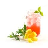 Odświeżający lato napoje w słoju Zdjęcia Stock
