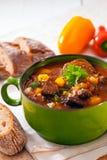 Odżywcza zimy potrawka Fotografia Stock