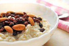odżywczy zbliżenia oatmeal Zdjęcia Stock