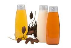 odżywka połuszczy materiału siewnego szampon Obraz Royalty Free