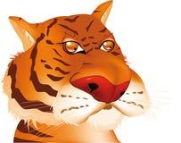 Od czerwony tygrys Fotografia Stock