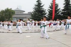 od 'tae kwon 'xi. 'robi dzieci w 'muzeum kwadrata występie 'xi. Zdjęcie Stock