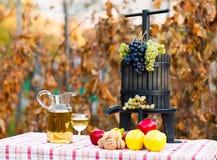 Od winogrona wino Zdjęcie Stock