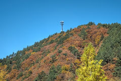 Odaesan National Park. One of the greatest mountains in Korea, with beautiful trees in every valley. Odaesan displays the beauty of Korean mountains with gentle Royalty Free Stock Photography