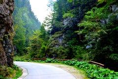 Odancusei Pass. Landscape in Apuseni Mountains, Transylvania Stock Image