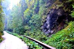 Odancusei Pass. Landscape in Apuseni Mountains, Transylvania Royalty Free Stock Photography