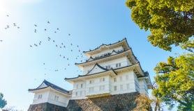 Odawara slott på morgonen i höst, Odawara, Kanagawa Prefectur Arkivbilder