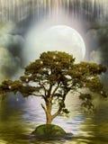 odbicia drzewo royalty ilustracja