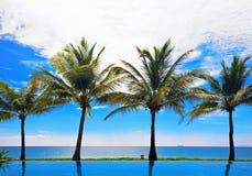 Odbicia palmy w basenie Fotografia Royalty Free