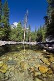 Odbicia w Merced rzece, Yosemite park narodowy, Kalifornia, usa Fotografia Royalty Free