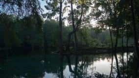 Odbicie cyprysowy las w turkusowym krysztale - jasnym nawadnia laguna Ginnie wiosny, Floryda USA zdjęcia stock