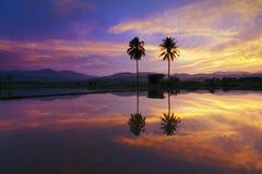 Odbicie dramatyczny zmierzch barwi przy obszarem wiejskim w Sabah, Borneo Obrazy Stock