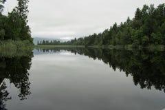 Odbicie drzewa w wodzie przy Jeziornym Matheson, Nowa Zelandia Zdjęcie Stock
