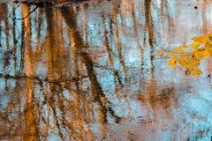 Odbicie jesień las w strumieniu obraz stock