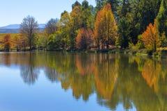 Odbicie jesieni colours na wodzie Obrazy Stock