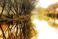odbicie krajobrazowa zima Fotografia Stock