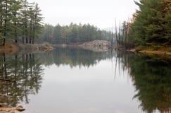 Odbicie las w jeziorze obraz stock