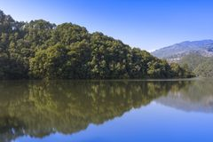 Odbicie las w jeziorze obraz royalty free