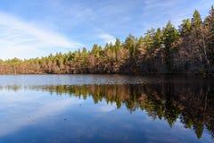 Odbicie las w wodzie Jesień krajobraz zdjęcia stock