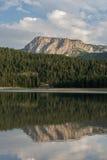 Odbicie na czarnym jeziorze, Durmitor park narodowy, Montenegro Obrazy Royalty Free