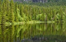 Odbicie na spokojnym jeziorze Zdjęcia Royalty Free