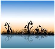 Odbicie trawa w wodzie royalty ilustracja