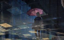 Odbicie w wodzie po deszczu
