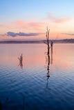 Odbicie wschód słońca przy Jeziornym Samsonvale fotografia stock