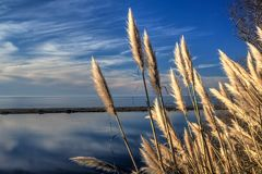 Odbijać Chmurnieje Nad Kalifornia laguną Zdjęcia Stock