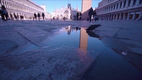Odbijający w kałuży San Marco wierza w Wenecja zbiory wideo