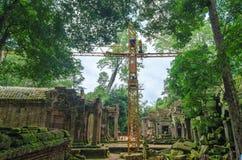 Odbudowa Antyczna Khmer architektura w dżungli Zdjęcie Royalty Free