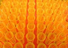 odchyl żółty Zdjęcia Royalty Free
