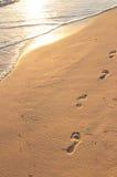 odcisków stóp plażowych sandy wschód słońca Obrazy Royalty Free