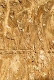 Odcisk na betonie jest teksturą drewniany sklejkowy pomarańczowożółty kolor obraz stock